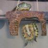 亀の新しい住処、水槽をオークションで落札したが、キャンセルされてしまった